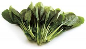 小松菜のメイン画像