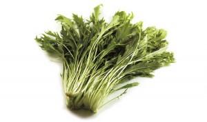 水菜のメイン画像